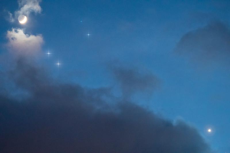 Venus under the Moonlight