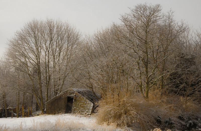 Winter along the Peconic River. Calverton, N.Y. - 01/08/2011