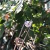 3.86ct Old European Cut Diamond GIA K VS2 65