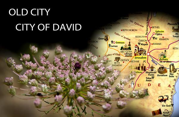 Israel 6 - Old City, City of David