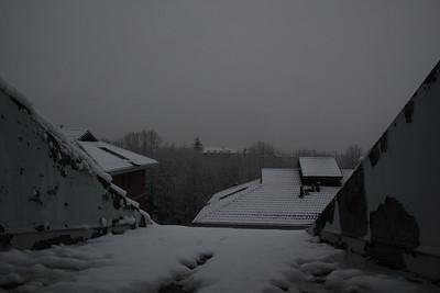 201012_Neve