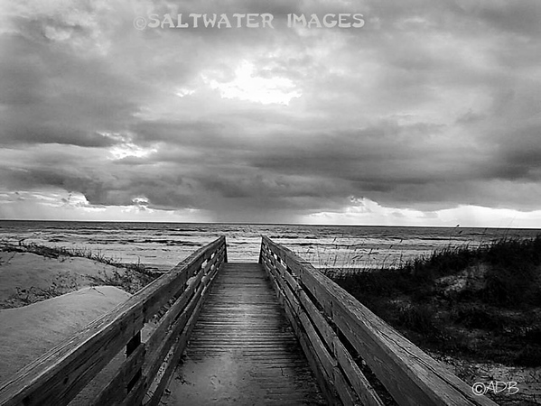 "Andrew Barkalow ~ ""Storm Is Brewing"""" B&W Photo"