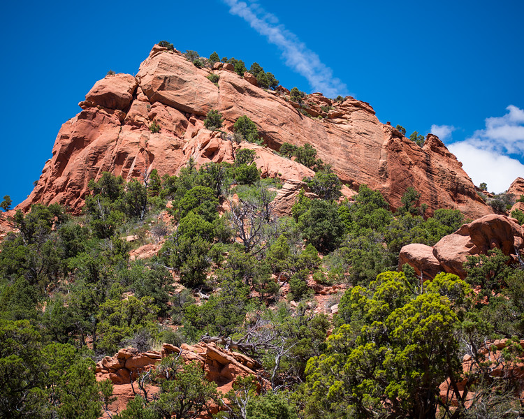 Kolob Canyons at Zion-12.jpg