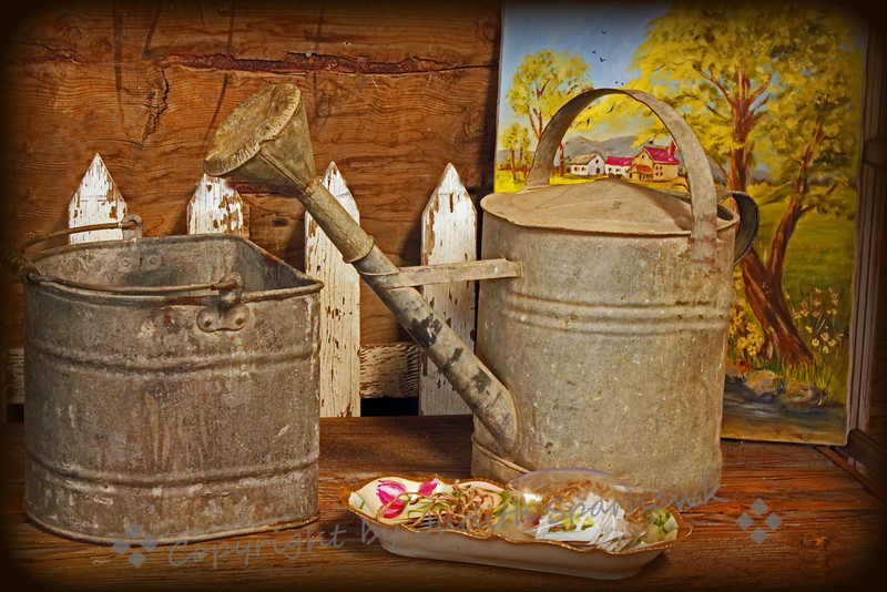 The Potting Shed ~ This still life was actually a grouping of items in an antique mall booth.  I liked the rustic look of the image, and used vignetting to give it a more antique look.