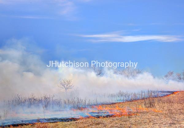 Prescribed Burns in the Grasslands