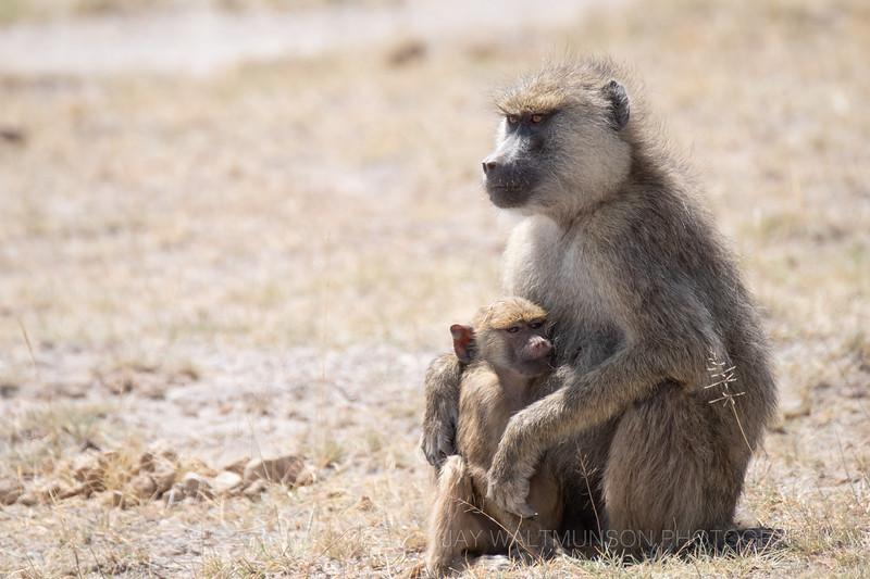 Jay Waltmunson Photography - Kenya 2019 - 161 - (DSCF4709).jpg