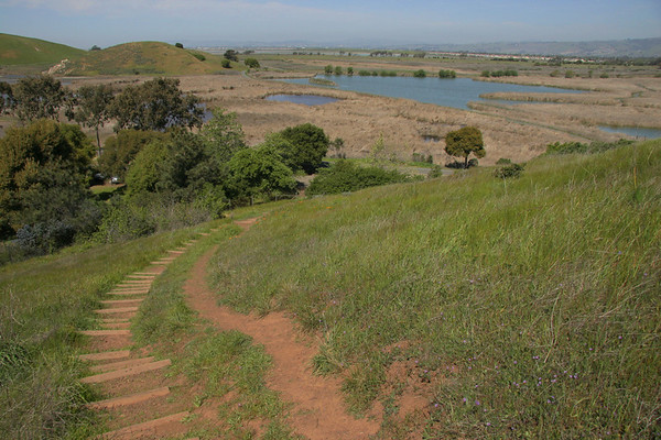 Coyote Hills, Fremont, March 31, 2007