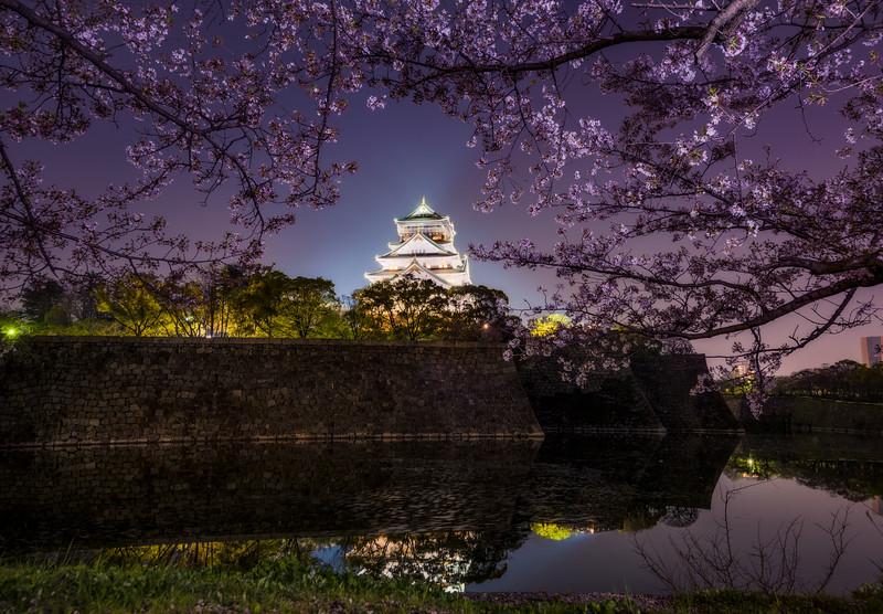 osaka-castle-night-framed-cherry-blossoms-japan-bricker.jpg