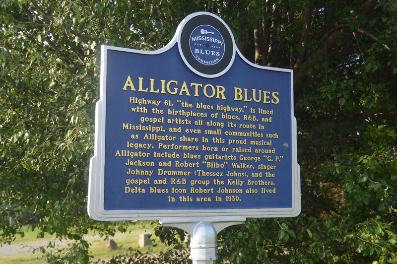 010 Alligator Blues.JPG