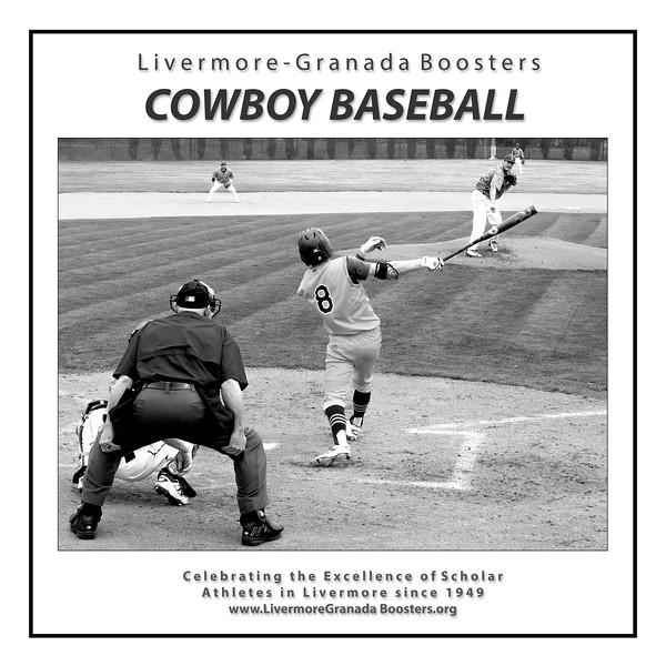 Baseball - LHS - 03 - Hitter LH.jpg