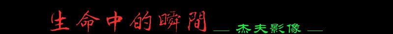 logo -xffffaa (4).jpg