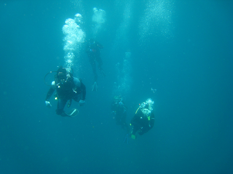 Diving in the Galapagos (344 of 392)