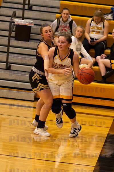 Fredericktown vs Arcadia Valley High School Woman's Varsity Basketball