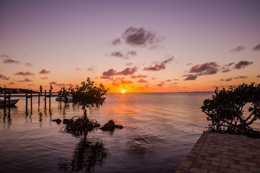 Your Guide of Things to Do in Islamorada