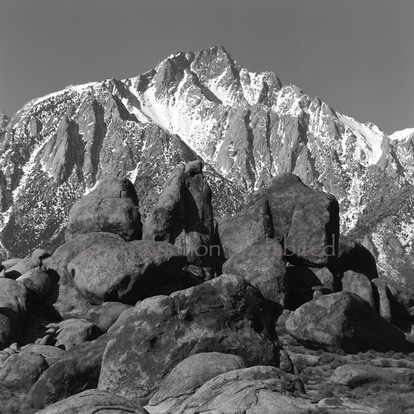 Eastern Sierra from Alabama Hills Near Lone Pine, CA.