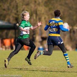 Delft Dames vs Tilburg Dames  - 28 February 2016