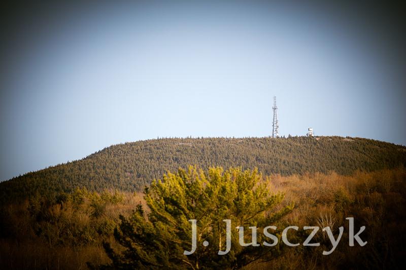 Jusczyk2021-8332.jpg