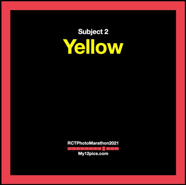 2) Yellow