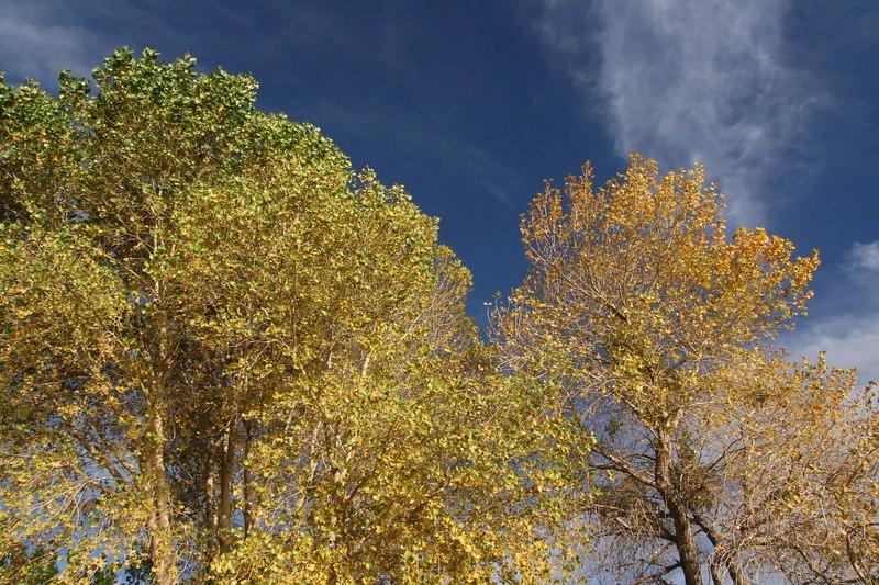 Lake Elizabeth 078_filtered.jpg