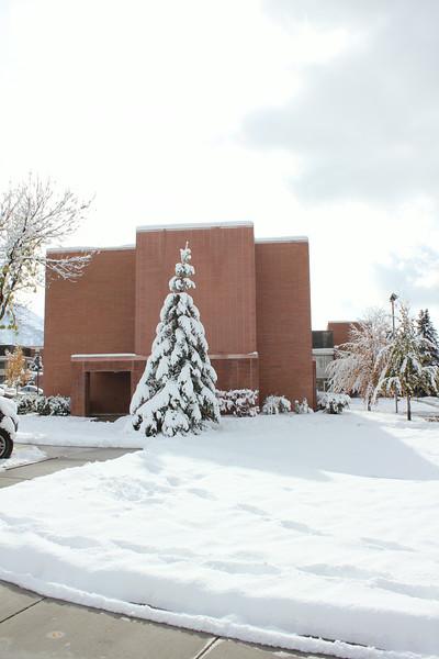 Snowy_Morning_11_10_2012_3322.JPG
