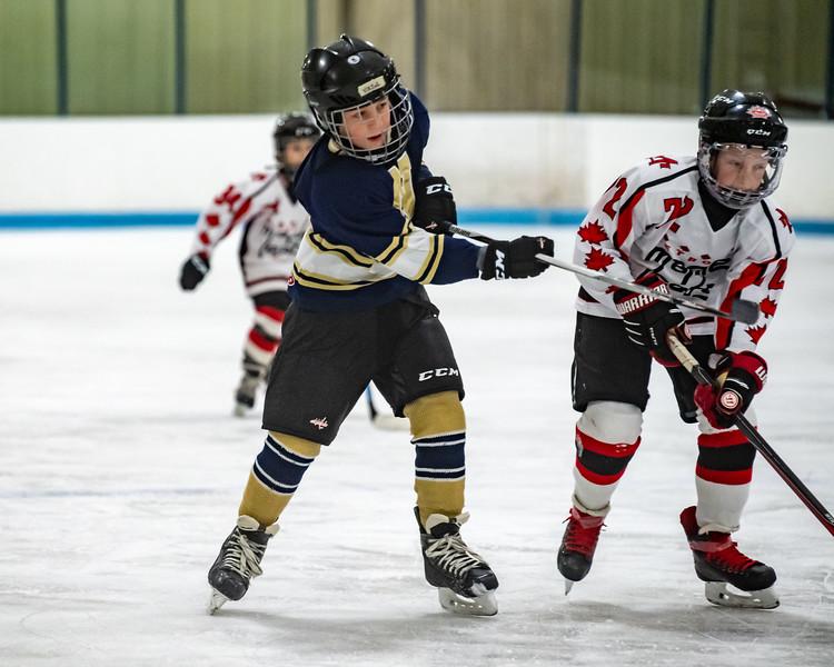 2019-Squirt Hockey-Tournament-65.jpg