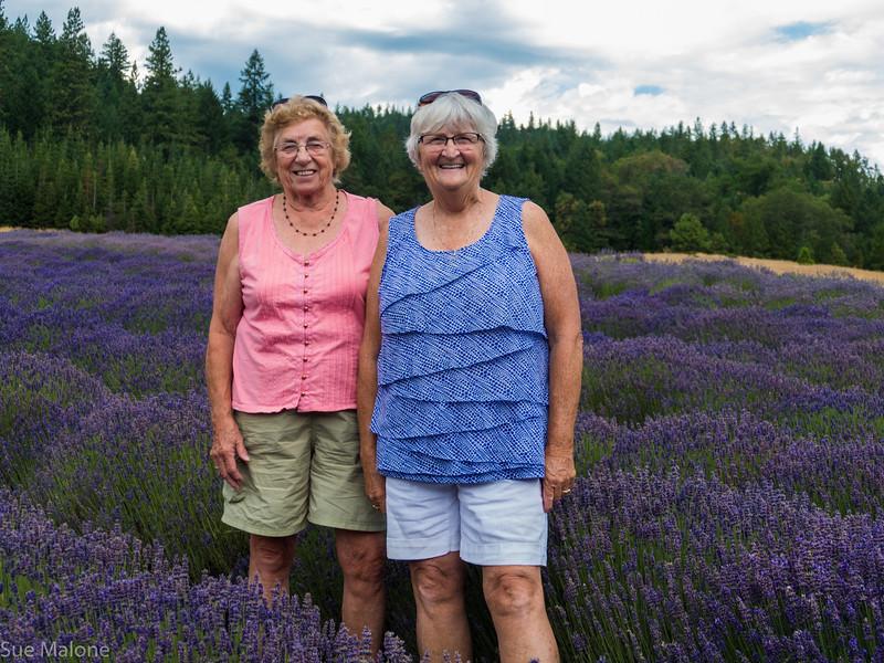 07-15-2018 A Day at the Lavender Farm-3.jpg