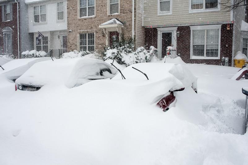 Snowzilla-4.jpg