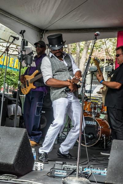 Jazz/Blues Festivals