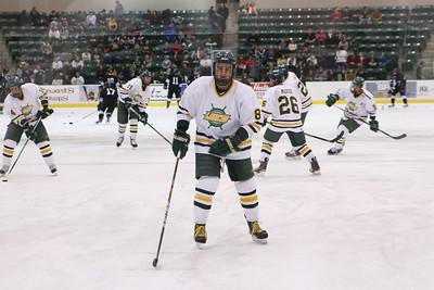 Oswego Men's Hockey 2011
