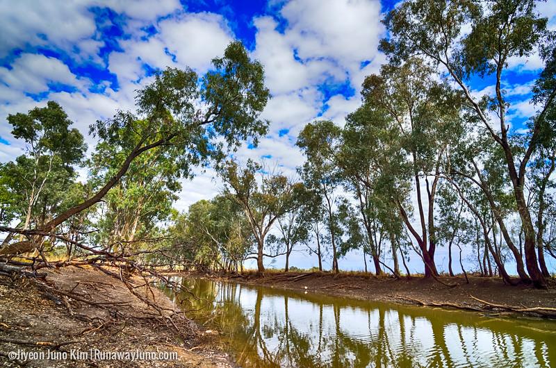Australia-Queensland-Charleville-.jpg