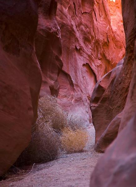 Bryce Canyon and Escalanti