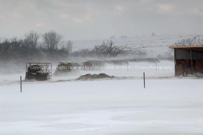 018-corral_snow-16feb08-madison_co-7791