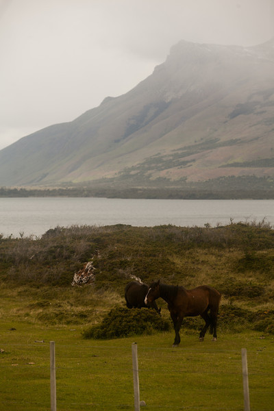patagonia-1124.jpg