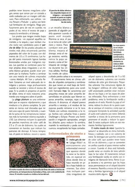 guerra_de_cesped_junio_2001-04g.jpg