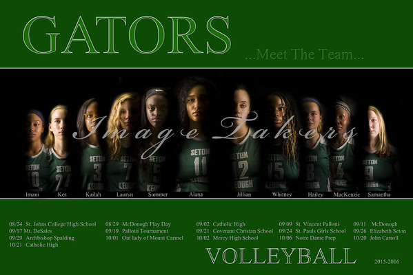 2015-2016 Volleyball Players