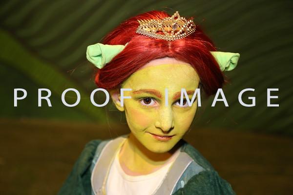 Sunday Primary - Shrek Cast