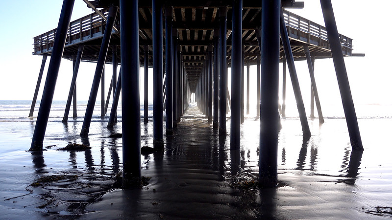 Underneath the Pismo Beach Pier, which has just re-opened after an 18-month restoration project