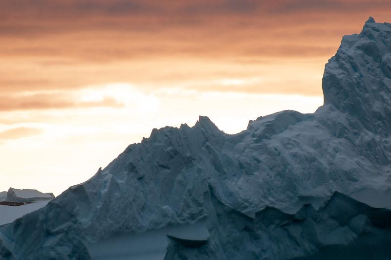 Antarctica 2015 (48 of 99).jpg