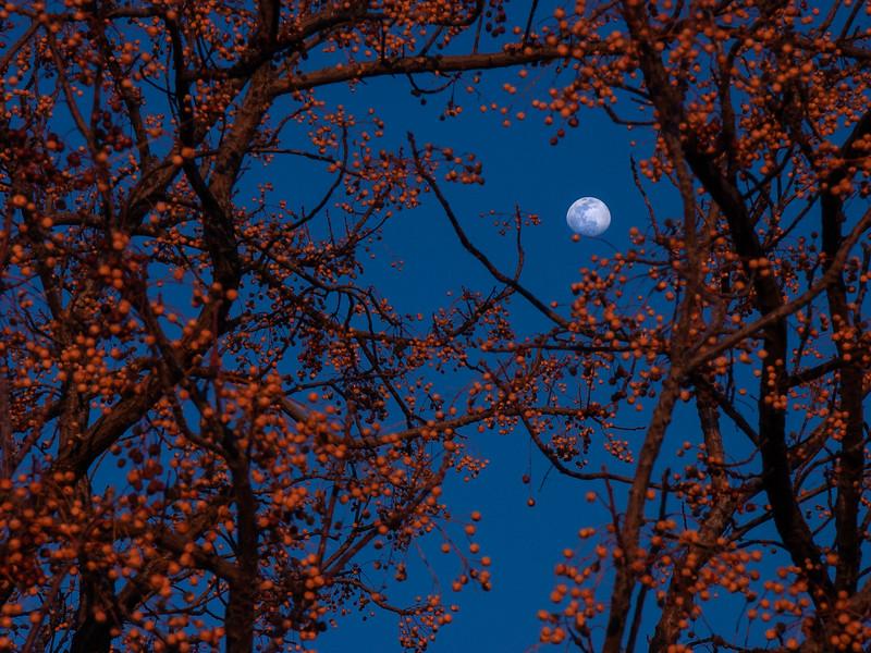 Twilight, Glendale, Arizona, 2004