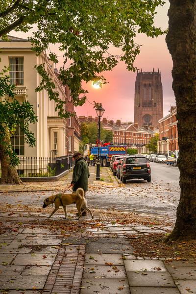 Autumn Views , Falkner Square, Liverpool