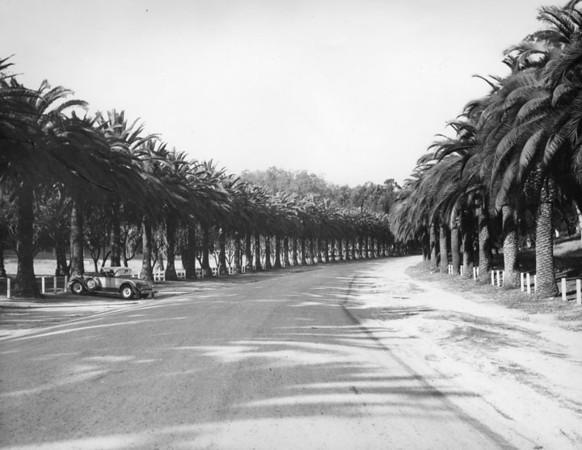 1937, Palm Drive