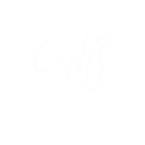 CWP Watermark Smugmug20%.png
