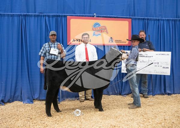 Jackpot Steer & Heifer