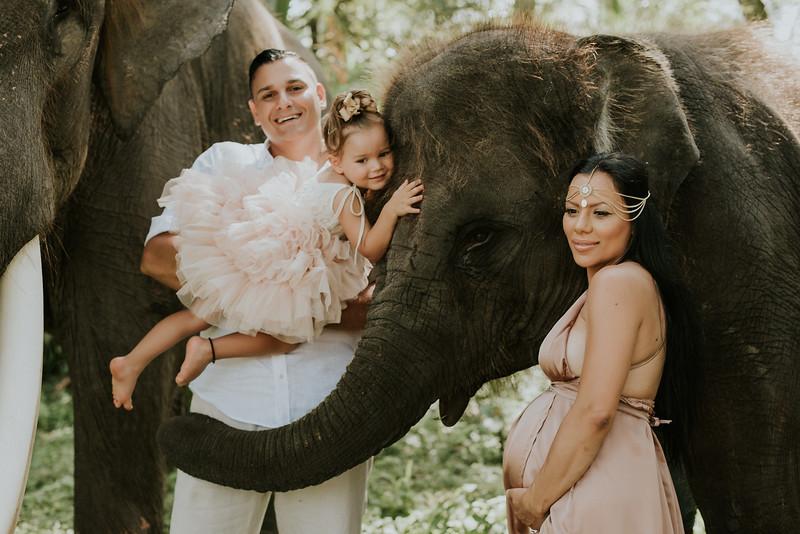 VTV_family_photoshoot_elephants_Bali_ (79).jpg