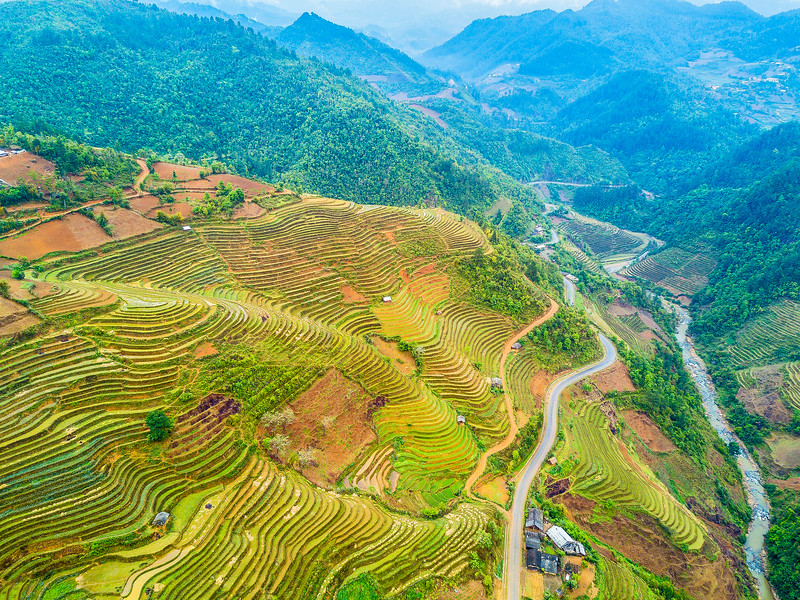 Sapa-Rice-terrace-mountain_Full.jpg