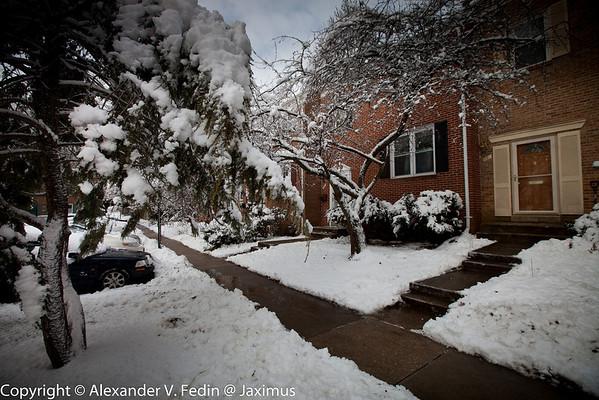 Snow on the East Coast - Rockville, MD - January, 2011