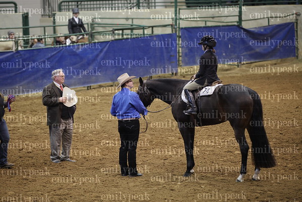 2015 Equestrians with Disabilities Show