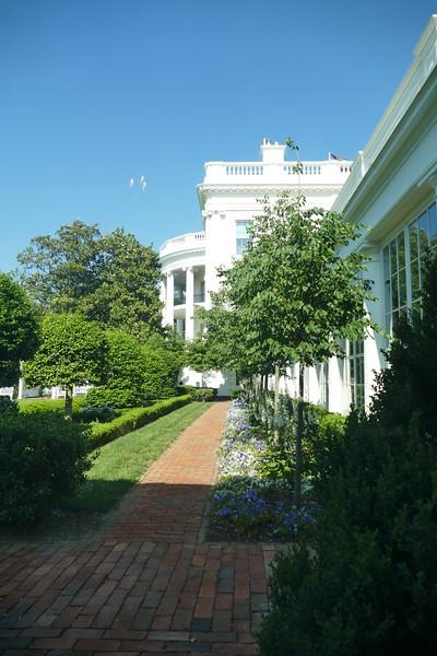 White House 2017