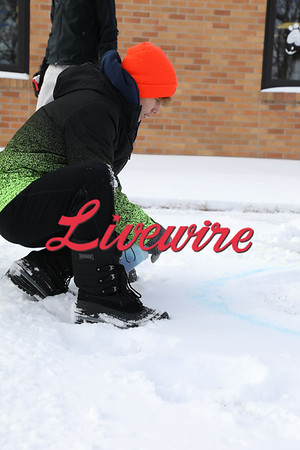 4-H Snow Art 1-24-21
