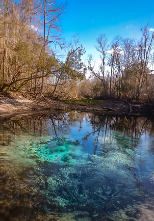 Cannon springs